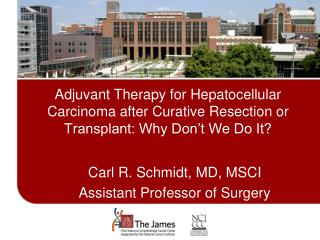 Adjuvant Therapy for Hepatocellular Carcinoma after Curative Resection or Transplant: Why Don t We Do It