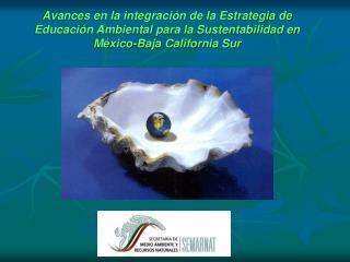 Avances en la integraci n de la Estrategia de Educaci n Ambiental para la Sustentabilidad en M xico-Baja California Sur