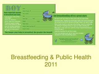 Breastfeeding  Public Health  2011