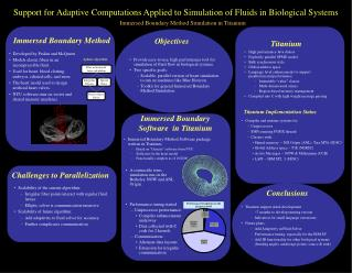 Support for Adaptive Computations Applied to Simulation of Fluids in Biological Systems
