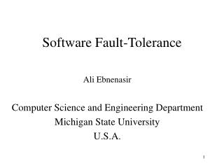 Software Fault-Tolerance