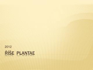 R  E  PLANTAE