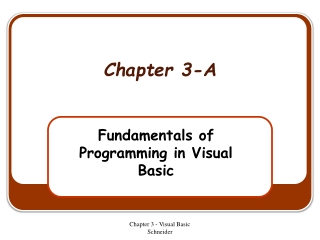 Fundamentals of Programming in Visual Basic