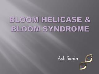 Bloom Helicase  Bloom Syndrome