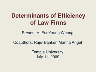 Determinants of Efficiency of Law Firms