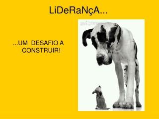 LiDeRaN A...