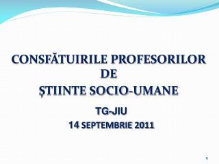 CONSFATUIRILE PROFESORILOR  DE  STIINTE SOCIO-UMANE