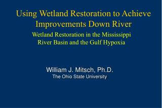 Using Wetland Restoration to Achieve Improvements Down River
