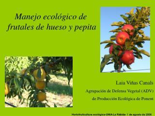 Hortofruticultura ecol gica-UNIA-La R bida- 1 de agosto de 2006