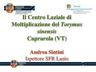 Il Centro Laziale di Moltiplicazione del Torymus sinensis  Caprarola VT  Andrea Sintini Ispettore SFR Lazio