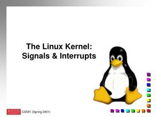 The Linux Kernel:  Signals  Interrupts