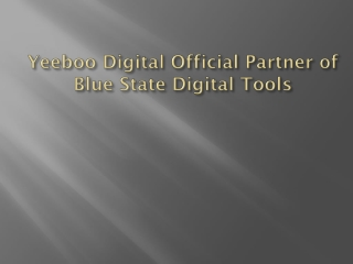 Yeeboo Digital Official Partner of Blue State Digital Tools