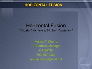 Horizontal Fusion  Catalyst for net-centric transformation