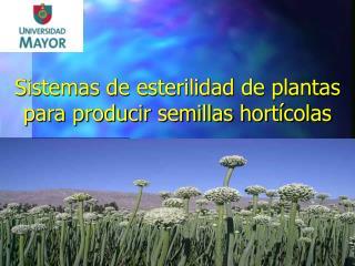Sistemas de esterilidad de plantas para producir semillas hort colas