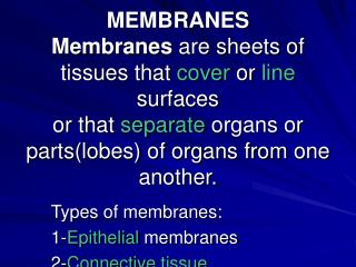 MEMBRANES Membranes are sheets of tissues that cover or line surfaces or that separate organs or partslobes of organs fr