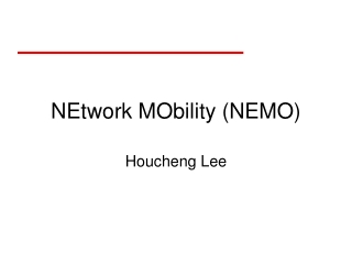 GLOBAL MOBILITY STRUCTURE