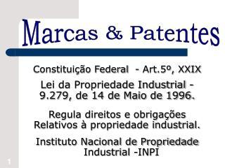 Constitui  o Federal  - Art.5 , XXIX  Lei da Propriedade Industrial -  9.279, de 14 de Maio de 1996.   Regula direitos e