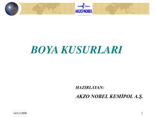 BOYA KUSURLARI
