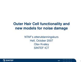 Outer Hair Cell functionality and  new models for noise damage