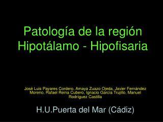 Patolog a de la regi n Hipot lamo - Hipofisaria