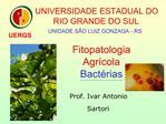 Fitopatologia  Agr cola Bact rias