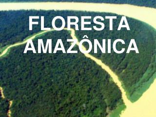 FLORESTA  AMAZ NICA