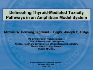 Delineating Thyroid-Mediated Toxicity Pathways in an Amphibian Model System