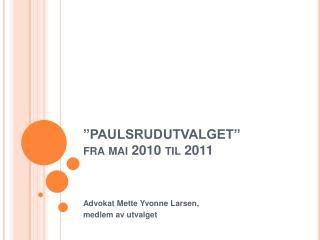PAULSRUDUTVALGET  fra mai 2010 til 2011