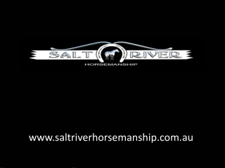 Colt Starting Clinic | Horse Problems Australia