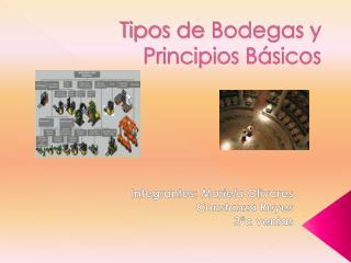 Tipos de Bodegas y Principios B sicos