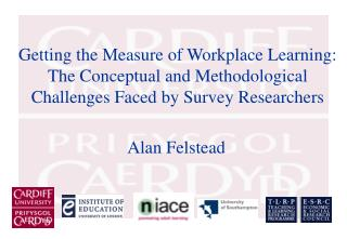 Getting the Measure of Workplace Learning: The Conceptual and Methodological Challenges Faced by Survey Researchers