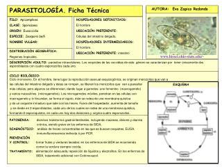 GALERIA FOTOGR FICA CON REFERENCIAS BIBLIOGR FICAS COMPLETAS: EJEMPLO:uniovi.es