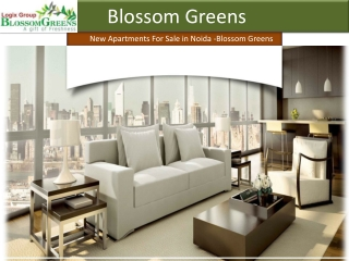 Logix Blossom| Logix Blossom Greens| Blossom Greens