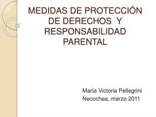 MEDIDAS DE PROTECCI N  DE DERECHOS  Y RESPONSABILIDAD PARENTAL
