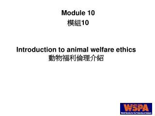 Introduction to animal welfare ethics