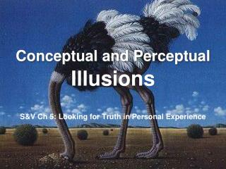 Conceptual and Perceptual