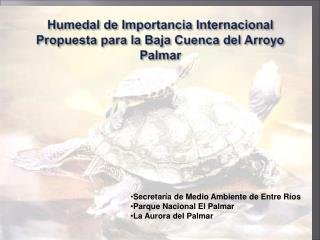Humedal de Importancia Internacional Propuesta para la Baja Cuenca del Arroyo Palmar