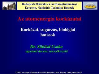 Budapesti Muszaki  s Gazdas gtudom nyi Egyetem, Nukle ris Technika Tansz k