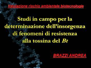 Studi in campo per la determinazione dell insorgenza  di fenomeni di resistenza  alla tossina del Bt