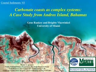 Carbonate coasts as complex systems:  A Case Study from Andros Island, Bahamas