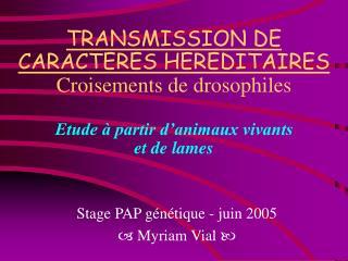 TRANSMISSION DE CARACTERES HEREDITAIRES Croisements de drosophiles  Etude   partir d animaux vivants et de lames