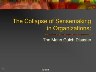 The Collapse of Sensemaking in Organizations: