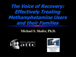 The Voice of Recovery:   Effectively Treating Methamphetamine Users and their Families