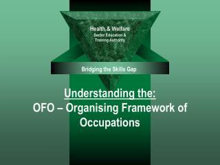 Understanding the: OFO   Organising Framework of Occupations