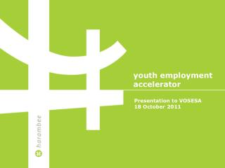 Youth employment  accelerator