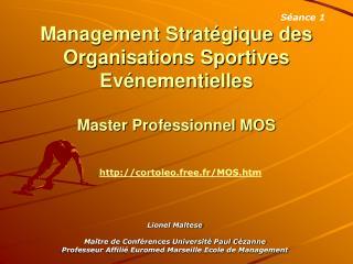 Management Strat gique des Organisations Sportives Ev nementielles  Master Professionnel MOS