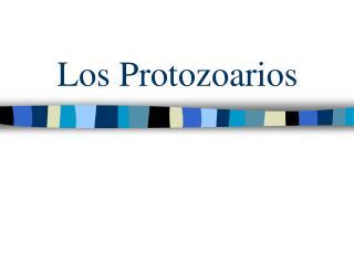Los Protozoarios