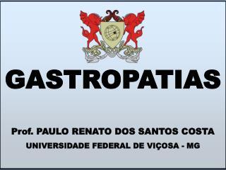 Prof. PAULO RENATO DOS SANTOS COSTA UNIVERSIDADE FEDERAL DE VI OSA - MG