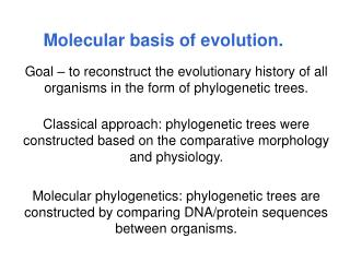 Molecular basis of evolution.