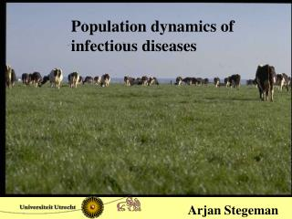 Population dynamics of  infectious diseases
